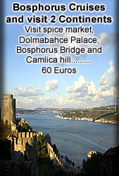 bosphorus cruise tours, bosphorus tours
