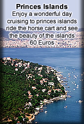 tours to princes islands istanbul