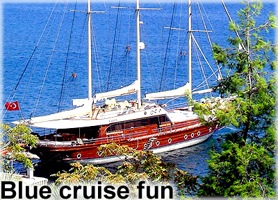 blue cruise tours